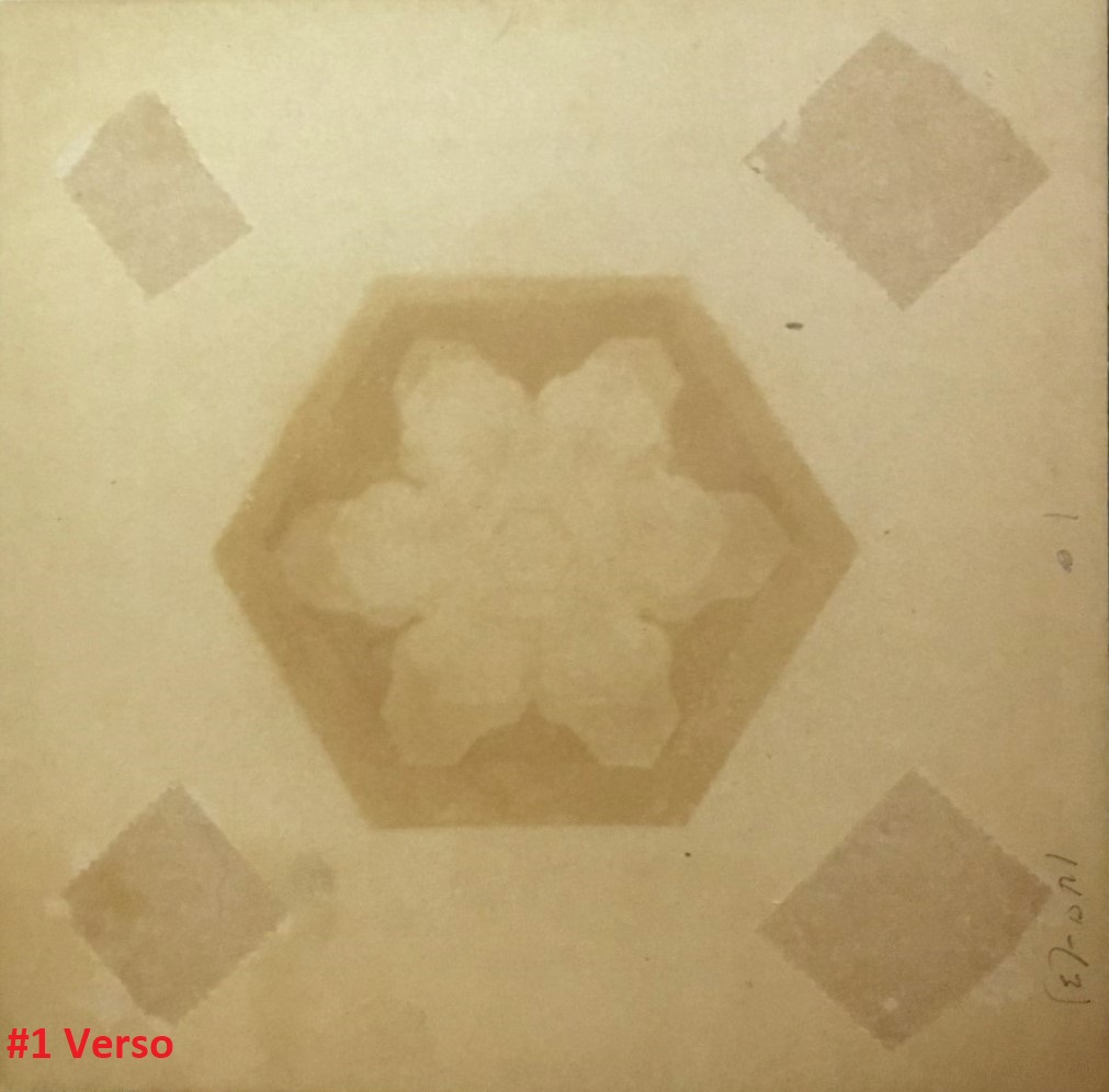 "View 3: ""Snowflakes"" by Wilson Bentley (1865-1931)"